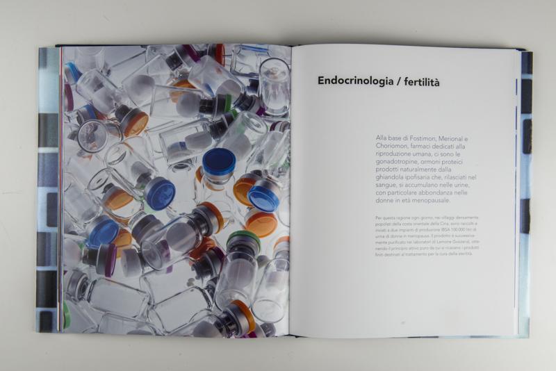 IBSA Endocrinologia